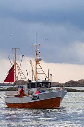 Fishingboats at Røst, Lofoten